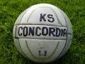 Ciekawostki z niższych lig: Kibice na meczu Concordia Knurów - Sarmacja Będzin 3:1 (GALERIA)