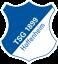 Herb klubu TSG 1899 Hoffenheim
