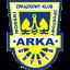 Herb klubu Arka Gdynia